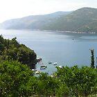 Molunat Croatia by elspeth2000