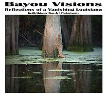 Louisiana Bayou Visions by KSkinner