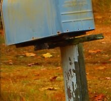 Rural Mail by Lisa Jones Caldwell