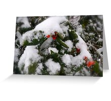 Snow Cover Holly Greeting Card