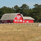 Red Barn by Great Divide  Photography