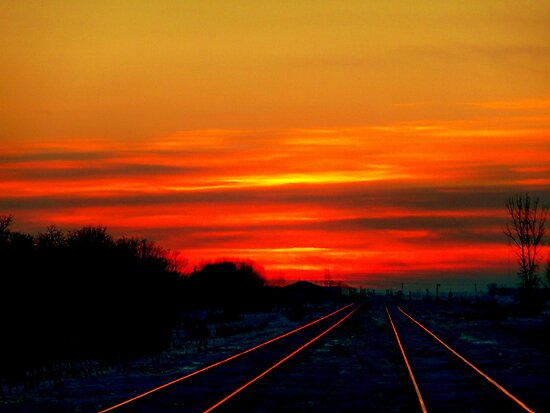 &quot;Scarlet Rails&quot;... by Larry Trupp