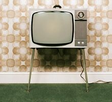 Television Darwinism by GuerrillaGarms