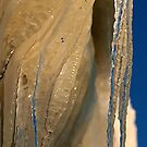 Icicles by Stephen Thomas