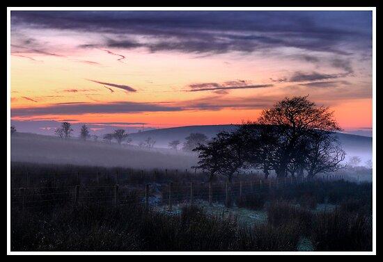 Freezing fog at sunset by Shaun Whiteman