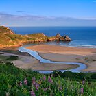 Three Cliffs Bay by Andrew Doggett