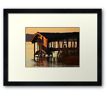 Old & Tired, Caught in The Evening Sun Framed Print