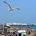 Brighton Seafront by pcimages