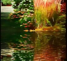 Summer Reflections by ecannon11