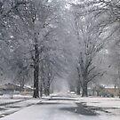 Maple Street Again by WildestArt