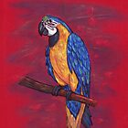 Blue and Gold Macaw by DarkGryph