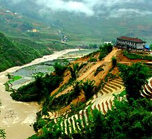 House on the Hill, Sapa Vietnam by Simmone