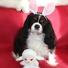 Charlie Girl Posing for Easter by AnnDixon