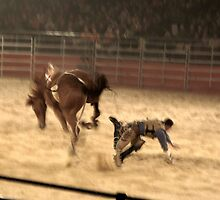 Equitana Rodeo 2008 - Biting the Dust by skyhorse