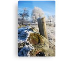 frozen  post Metal Print