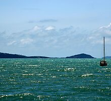Boats at Airlie Beach by Dave Law