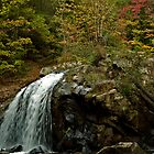 Turtletown Creek East Falls II by John O'Keefe-Odom