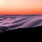 Above the Clouds LS by Gary Pope
