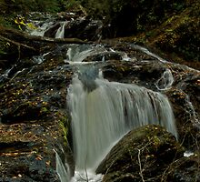 Turtletown Creek West Falls II by John O'Keefe-Odom