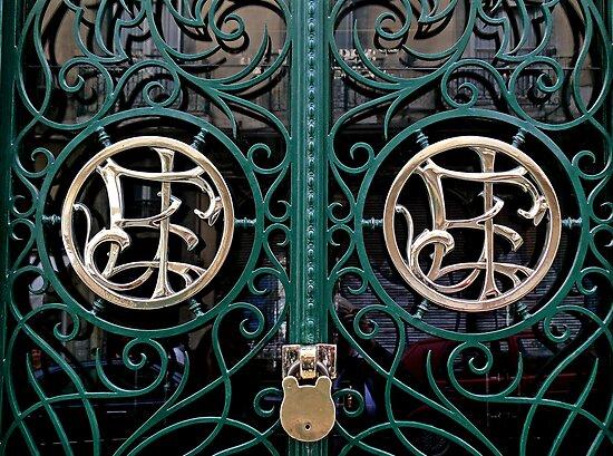 iron beauty by terezadelpilar~ art & architecture