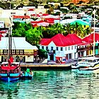 Antigua - St. Johns Harbor Early Morning by Susan Savad