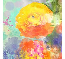 Painterly flowers in vivid summer colors Photographic Print