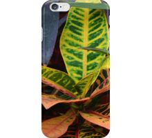 Tropical Plants iPhone Case/Skin