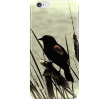 Visions of summer past iPhone Case/Skin