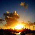 Scorching Sunset by Of Land & Ocean - Samantha Goode