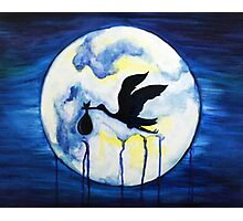 Stork in the Night Photographic Print