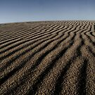 Dark Point Dune 12 by angelo marasco