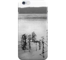 Susquehanna River iPhone Case/Skin