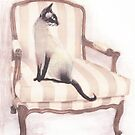 Cat on chair. by Siamesecat