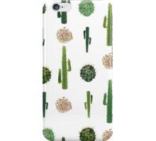 Cacti and tumbleweed seamless pattern iPhone Case/Skin