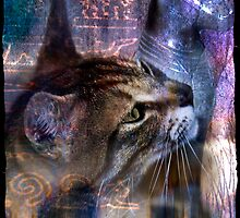 Cats by Wendy  Slee