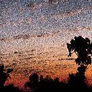 Sunset fresco by Jayson Gaskell