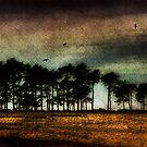 Under a Mugdock Sky by Linda  Morrison
