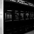 New York City Subway by DavePlatt