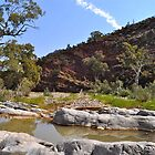 Brachina Creek - Flinders Ranges by Ian Berry