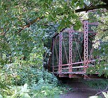 """Wildman's"" Bridge by mnkreations"