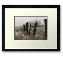 Seen Every Season Framed Print