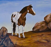 The wild painted pony by Elaine Whitby