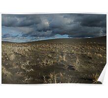 Desert Wind  & Rain Poster