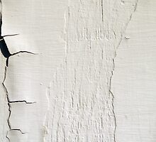 Peeling Paint 5 by rdshaw