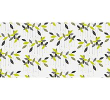 Abstract pattern with green leaf. Photographic Print