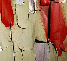 Peeling Paint 12 by rdshaw