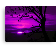 LAST LIGHT (in purple) Canvas Print