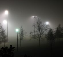 Foggy night in the Park by Karen Doidge
