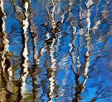 Abstract Aspen Tree Reflection by Christina Rollo