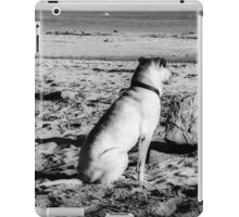 00395 iPad Case/Skin